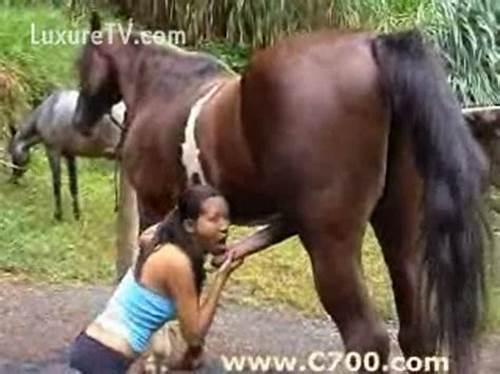 صور مراهقة مع حصان